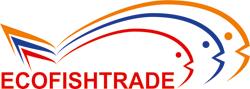 Начата работа по созданию сайта для компании EcoFishTrade