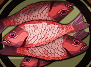 Лина ЖИТЛОВА: Рыбная отрасль РФ требует выстраивания четкой системы реализации
